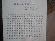 080725アシウスギ説明番@エコカフェ(芦生公開講座).jpg
