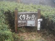 081106ヤクザサ草原@エコカフェ屋久島エコツアー2 051.jpg