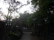 090419鳩森神社@エコカフェ.JPG