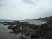 100612伊豆大島海岸@エコカフェ.JPG