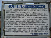 101010人頭税石看板@エコカフェ.JPG