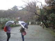 111119源氏山公園@エコカフェ.JPG