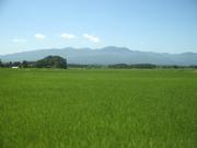 120803田園風景@エコカフェ(佐渡島).JPG