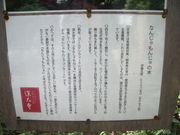 121013なんじゃもんじゃ看板@エコカフェ.JPG