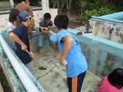 121020水槽清掃は共同で@エコカフェ(小笠原海洋センター).JPG