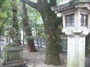 121028猿田彦神社灯篭@エコカフェ.JPG