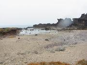 121030イリビシ石灰岩@エコカフェ.JPG