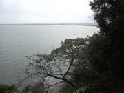 121117カラスザンショウ@エコカフェ(江ノ島).JPG