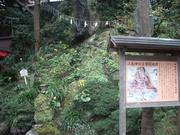121117江ノ島神社境内@エコカフェ.JPG