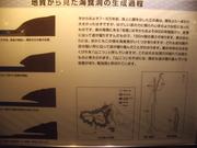 121117海食洞生成過程看板@エコカフェ.JPG