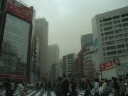 130310黄砂襲来@エコカフェ.JPG