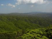 130413深い奄美の森@エコカフェ.JPG