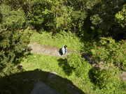 130413湯湾岳展望台直下@エコカフェ.JPG