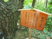 130505物語の松看板@エコカフェ.JPG