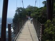 130608城ヶ崎海岸吊り橋@エコカフェ.JPG
