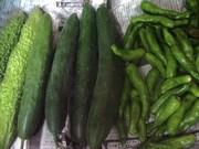 130807夏野菜@エコカフェ.JPG