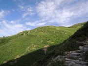 130817登山道@エコカフェ.JPG