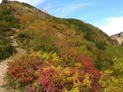 130922赤岩尾根から冷乗越の紅葉を@エコカフェ(高田).jpg