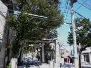 140216中野氷川神社@エコカフェ.JPG