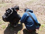 140316ハハコグサを観察風景@エコカフェ(寺中、玉木).JPG