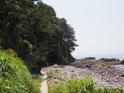 140531海岸沿いの遊歩道@エコカフェ.JPG