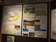 141109ツシマヤマネコ野生復帰事業@エコカフェ.JPG