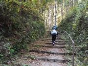 141115時坂峠に向かう道中@エコカフェ.JPG