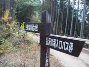 141115浅間尾根の標識@エコカフェ.JPG