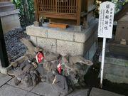 150124福寿稲荷社狐@エコカフェ.jpg
