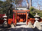 150201丸山稲荷神社@エコカフェ.JPG