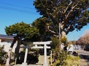 150201八雲神社全景@エコカフェ.JPG