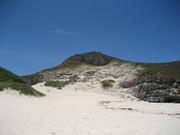 2006珊瑚礁の島@エコカフェ小笠原データ 126.jpg