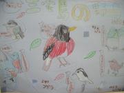 三宅島の野鳥@エコカフェ.JPG