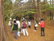 京都大学フィールド科学教育研究センター上賀茂試験地@エコカフェ.JPG