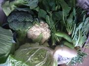 初冬の野菜@エコカフェ.JPG