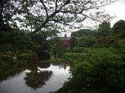 小石川植物園庭園@エコカフェ.JPG