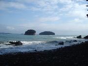 岩礁海岸@エコカフェ.JPG