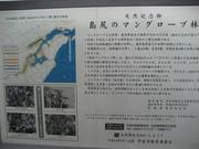 島尻マングローブ林看板@エコカフェ.JPG