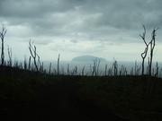 御蔵島を望む@エコカフェ.JPG