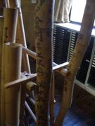 本吉郡の竹の標本@エコカフェ.JPG