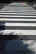 横断歩道@エコカフェ.jpg