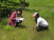 湿生植物学習センター保護観察�A@エコカフェ.JPG