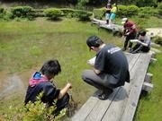 湿生植物学習センター保護観察@エコカフェ.JPG