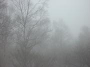 突然の吹雪@エコカフェ(八ヶ岳山麓).JPG