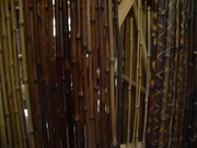 竹の標本@エコカフェ.JPG