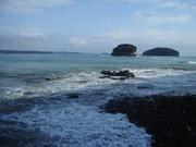 震災後の南三陸町戸倉の海岸線@エコカフェ.JPG